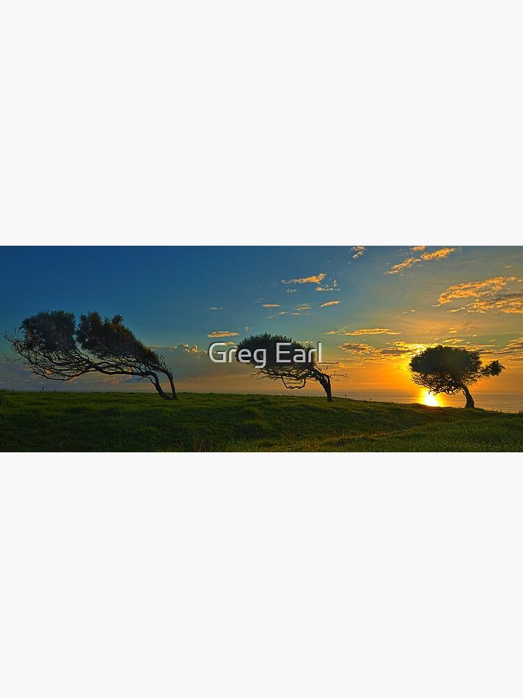 Windswept Trees - Norfolk Island by GregEarl