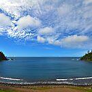 Ball Bay - Norfolk Island by Greg Earl