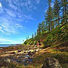 Creswick Bay - Norfolk Island by Greg Earl