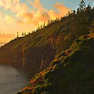 First Light - Norfolk Island by Greg Earl