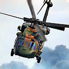 Black Hawk 222  by Peter Redmond