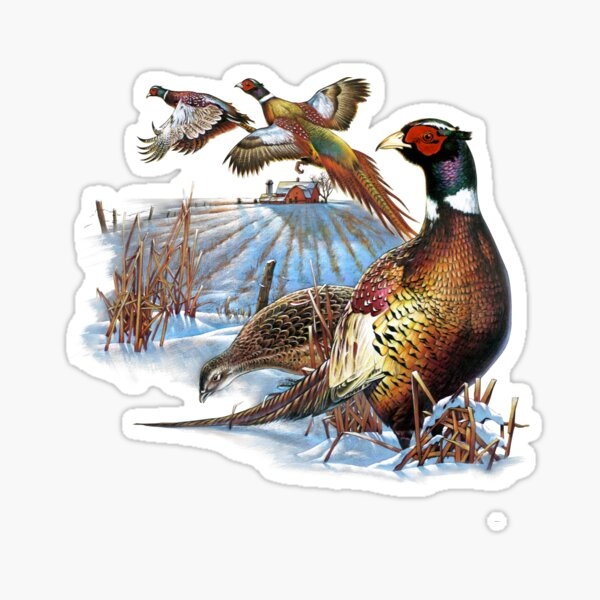 STICKO Craft /& Scrapbook Stickers-faisan cerf Canard Animaux Fusil Chasse
