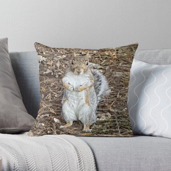 Cute Gray Squirrel  Throw Pillow