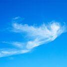 Icarus {cloud } by richard  webb
