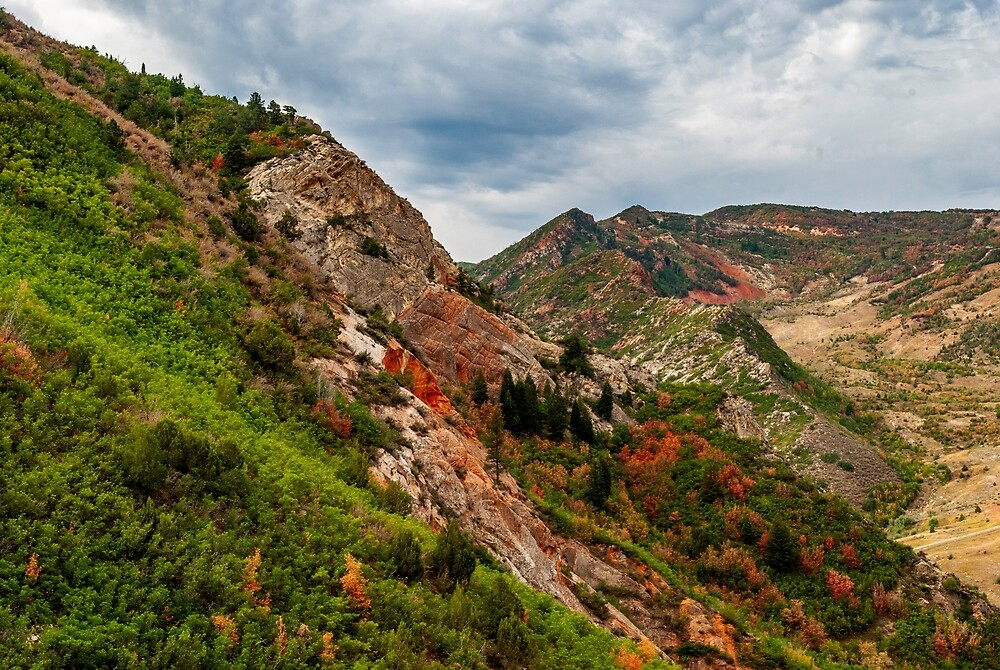 Wasatch Mountain Color by Bryan Spellman