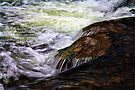 Rapids at Beavers Bend by Carolyn  Fletcher