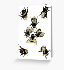 Bumble bees Greeting Card