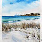 Boltons Beach - spinifex by melhillswildart