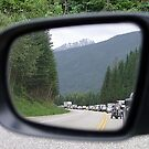 Side Mirror View by George Cousins