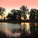 Colors at Sunrise by ienemien