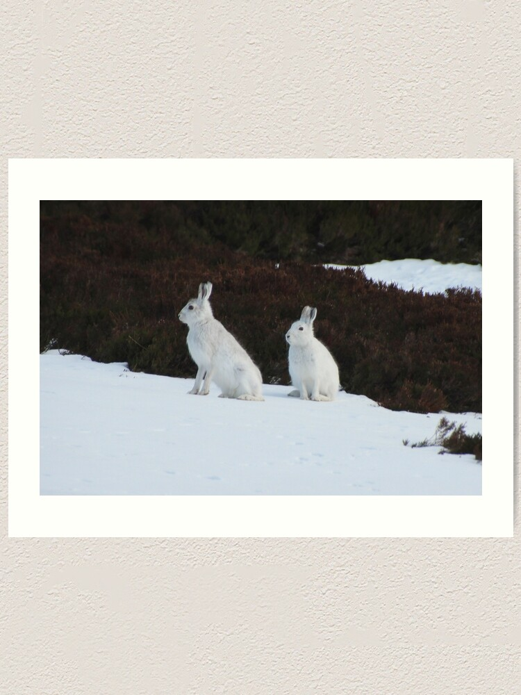 Alternate view of Winter coats Art Print