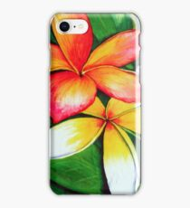 Frangipanis iPhone Case iPhone Case/Skin