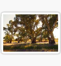 Regal Red Gums Sticker