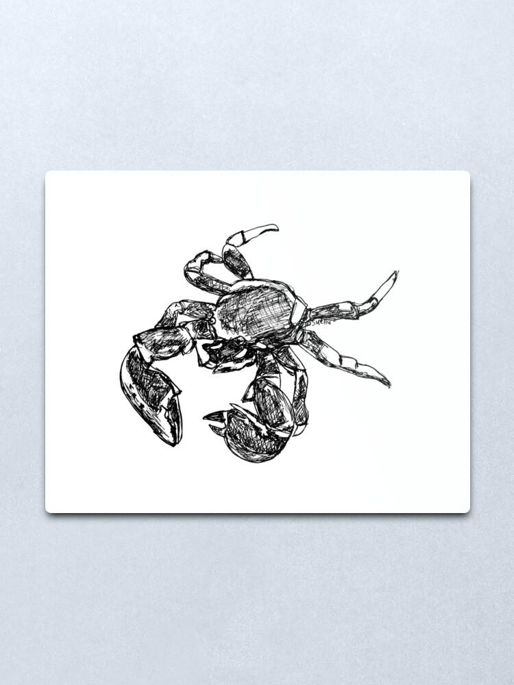 Alternate view of Maria the Crab Metal Print