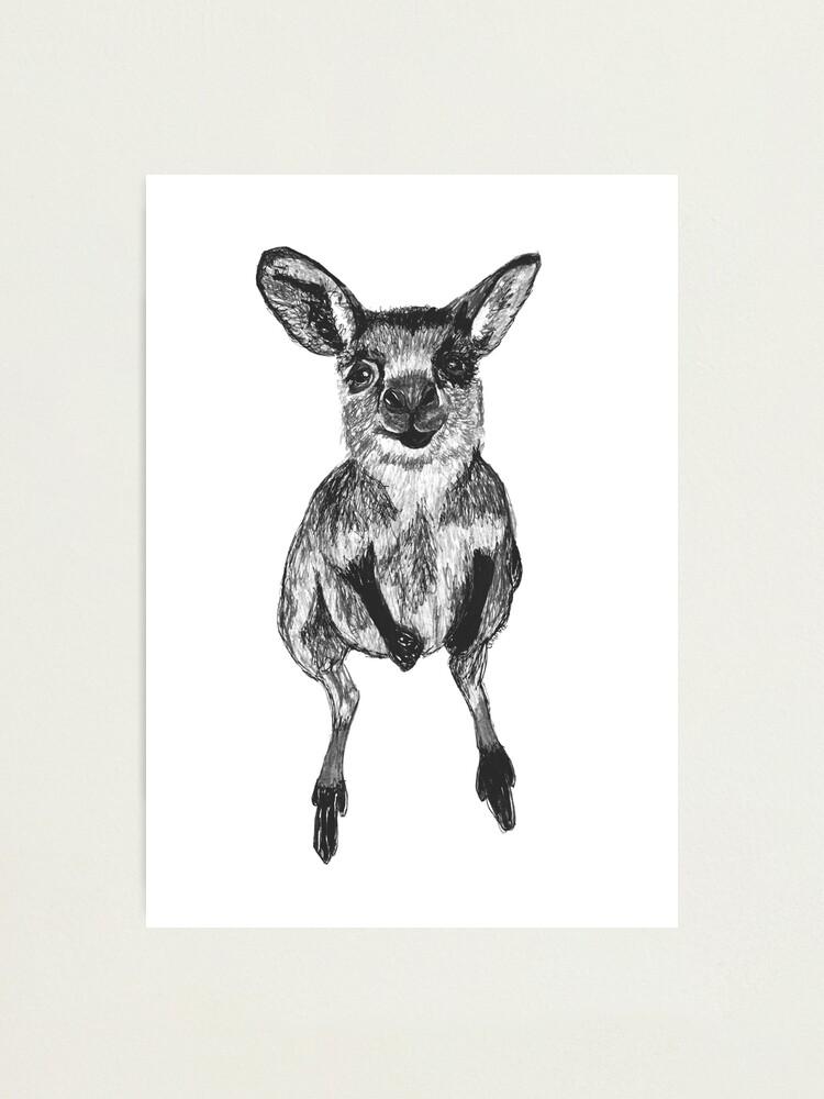 Alternate view of Josephine the Baby Kangaroo Photographic Print