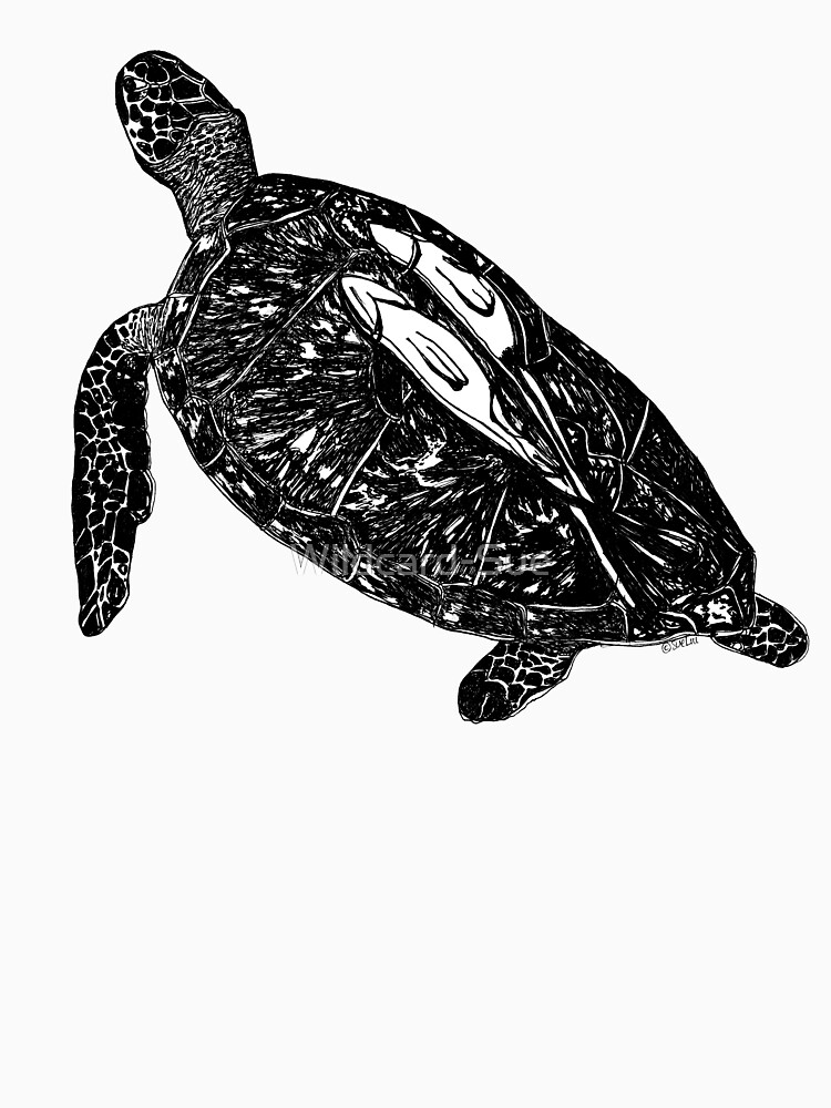 Lucy the Sea Turtle with Remora  by Wildcard-Sue