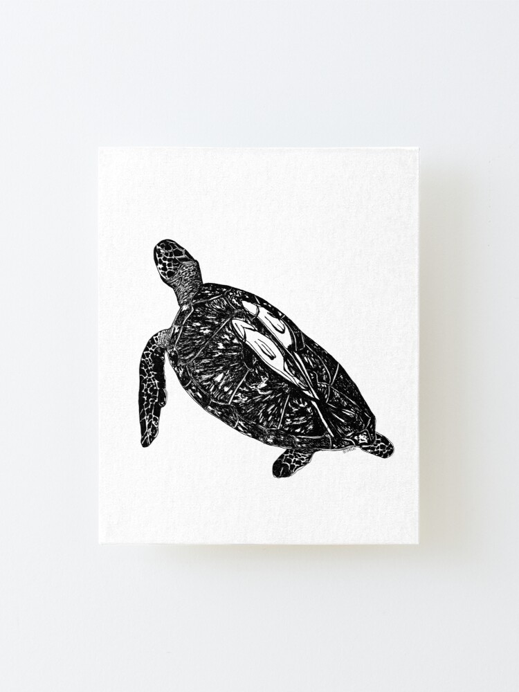 Alternate view of Lucy the Sea Turtle with Remora  Mounted Print