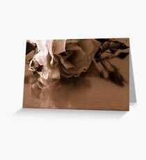 A faded rose Greeting Card