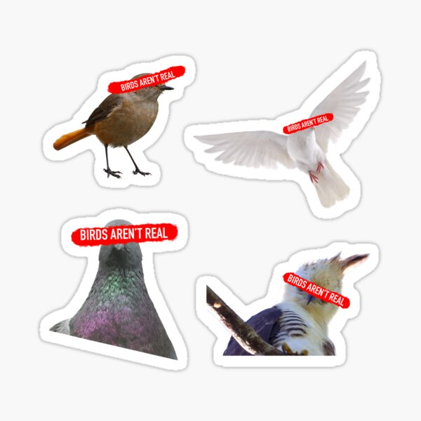 Birds Aren't Real Sticker Pack Sticker