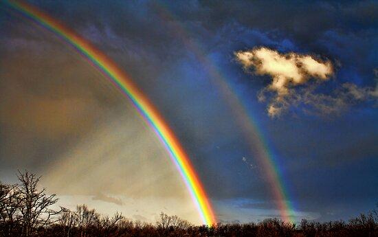 Double Rainbow With Anti-Crepuscular Rays by Carolyn  Fletcher