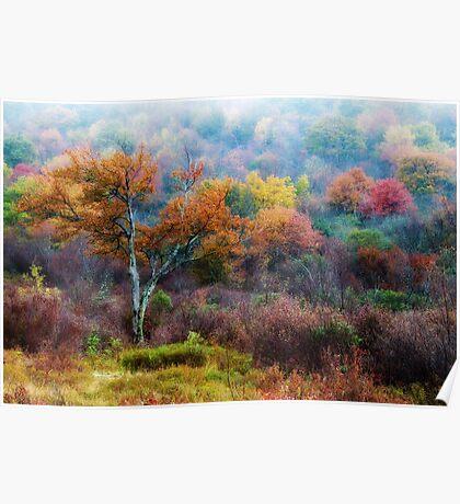 October Fog Poster