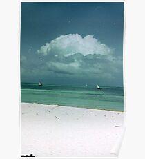 dows on the horizon Poster