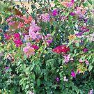 Beautiful Flowers by Lynn Bolt