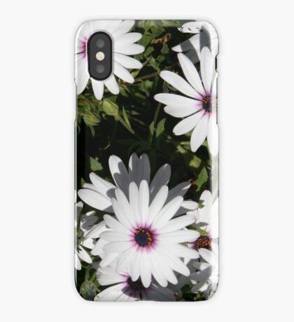 Daisy (iphone case) iPhone Case/Skin
