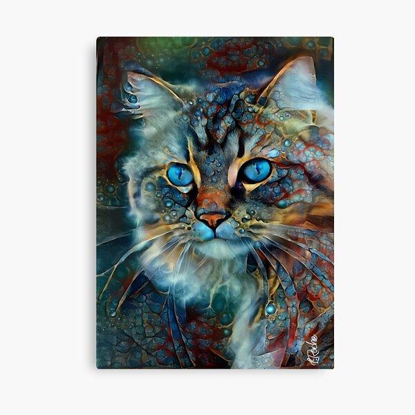 Tabata Velvet - chat, chat, chat, chaton, visage de chat, tete chat, animal domestique, lea roche Impression sur toile