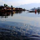 Mornings of the Dal by Harsh Mangal