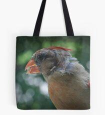 Young Northern Cardinal Tote Bag