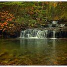 Quinn Run Falls by Aaron Campbell