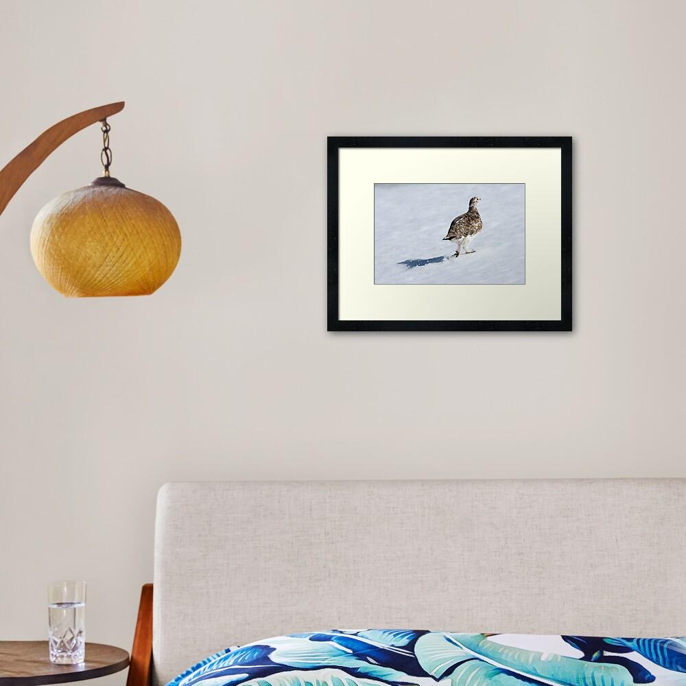 Ptarmigan Framed Art Print