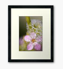 Floral Foam Framed Print