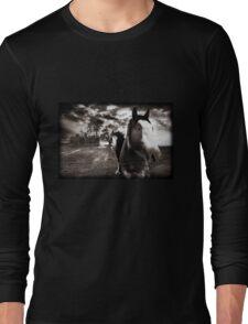 Horses 1 T shirt Long Sleeve T-Shirt