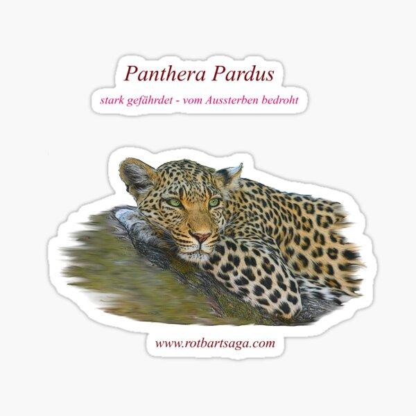 Rotbart's wild relatives - leopard Sticker