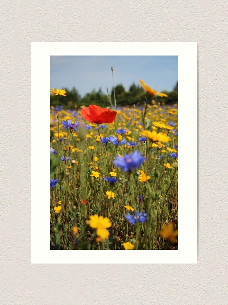 Alternate view of Wildflower meadow Art Print