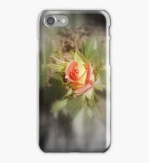 peach yellow two tone rosebud  iPhone Case/Skin