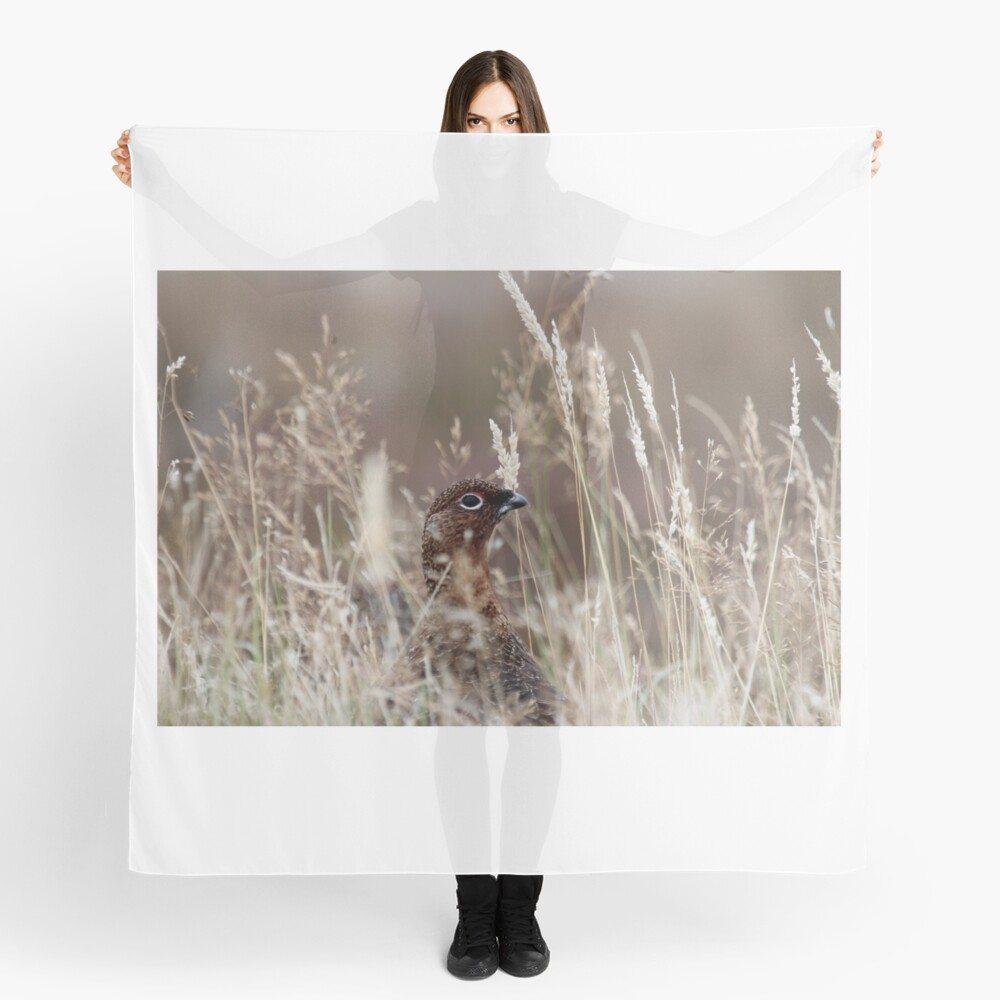 Grouse pose Scarf