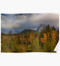 Bow Valley Fall  Poster