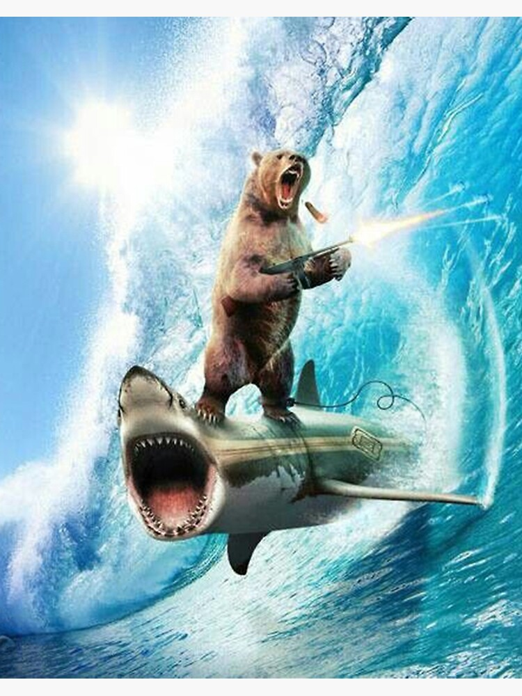 "Bear Surfing On Shark"" Art Board Print by NoWukkasMate 