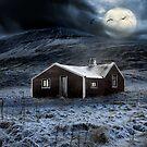 Winternight by Þórdis B.