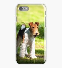 Fox Terrier iPhone Case/Skin