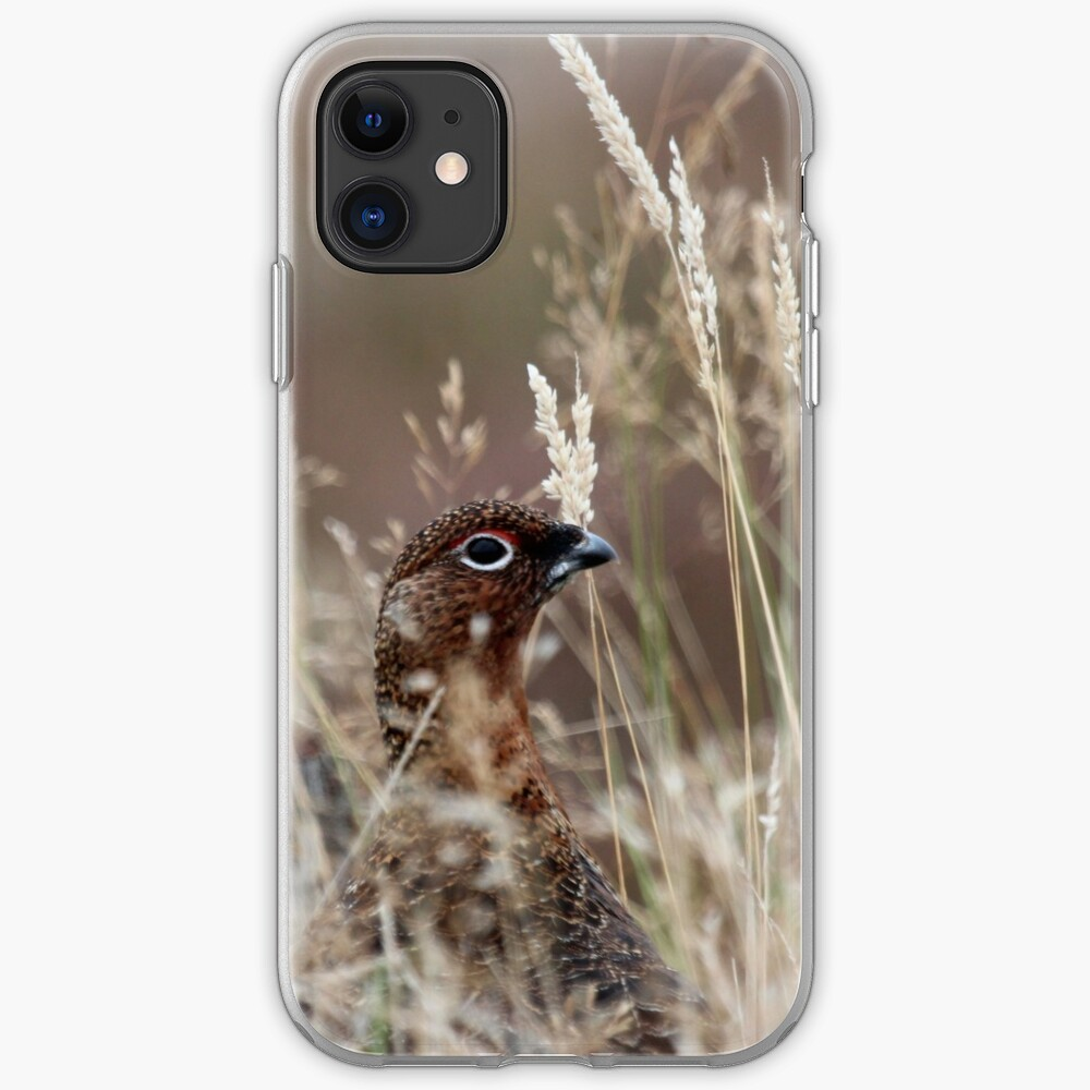 Grouse pose iPhone Case & Cover