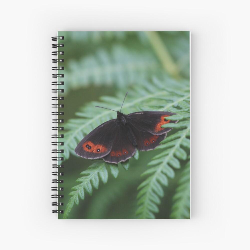 Scotch Argus butterfly Spiral Notebook