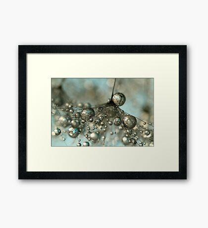 Dandy in Silver & Blue Framed Print