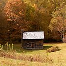 Rustic Cabin by Tom Michael Thomas