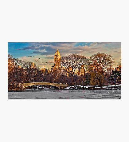 Bow Bridge In Winter Photographic Print
