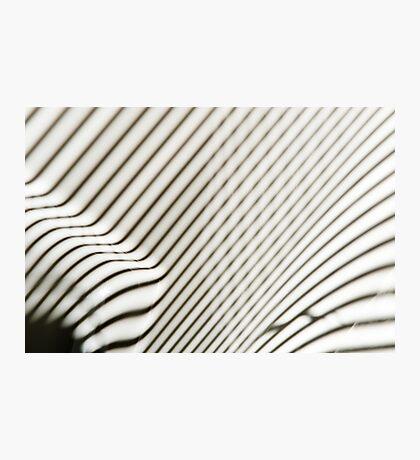 Lines Everywhere Photographic Print