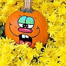 Fun Fall Pumpkins by Maria Dryfhout